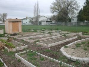 Westlake garden