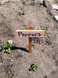 peppers sign