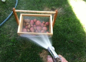 potatoes and water
